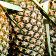 Pineapple texture fresh ripe pineapple background — Stock Photo