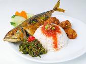 Asia food and rice malaysia — Stock Photo