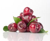 Fresh cherry berry on background — Stockfoto