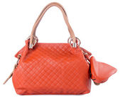 Bag. women bag on a background — Stock Photo