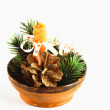 A candle, a pine cone and small branches of pine spruce — Stock Photo #8132123