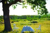 春、白いテーブル屋外 — ストック写真