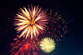 Colorful firework display — Stock Photo