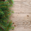 Spruce branches on wooden background — Foto de Stock