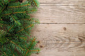 Spruce branches on wooden background — Stock Photo