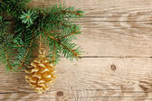 Golden pine cone on christmas tree — Stock Photo