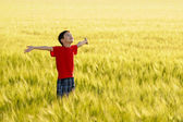 Cute child enjoying the sun on wheat field — Stock Photo