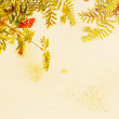 Stock Photo: Pretty floral grungy background with rowtrees and berries