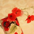 Pretty floral grungy background with red poppies — Stock Photo