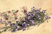 咲く lobelias と美しいビンテージ背景 — ストック写真