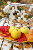 Ripe, green apples in the garden, Autumn time — Foto de Stock