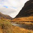 Glencoe, Scottish highlands, Scotland, UK — Stock Photo #14278103