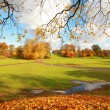 Beautiful, sunny autumn in the park — Stock Photo #14312139