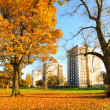 Beautiful, sunny autumn in Falkirk, Scotland — Foto Stock