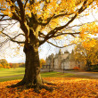 Callendar House in Autumn, Falkirk, Scotland - Stockfoto