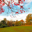 Beautiful, sunny autumn in the park — Stock Photo #14312573