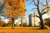 Beautiful, sunny autumn in Falkirk, Scotland — Stock Photo