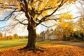 календарных дом в осень, фолкерк, шотландия — Стоковое фото