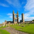 St Andrews Cathedral — Stock Photo #14842801