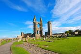 St Andrews Cathedral — 图库照片