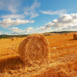 Scenic landscape with haybales - Stockfoto