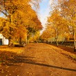 Wonderful autumnal scene in the park - Stock Photo
