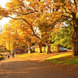 Wonderful autumnal scene in the park of Falkirk, Scotland — Stock Photo