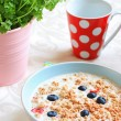 Healthy musil vegetarian breakfast — Stock Photo