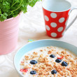 Healthy musil vegetarian breakfast — Foto Stock