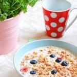 Healthy musil vegetarian breakfast — Stock Photo #19190853