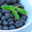 Royalty-Free Stock Photo: Ripe blueberries in the blue bowl