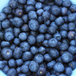 Ripe blueberries in the blue bowl — Stok fotoğraf