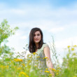 Beautiful young woman among wildflowers — Stok fotoğraf