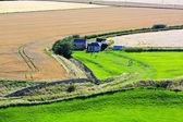 Beautiful Scottish landscape with fields — Stock Photo