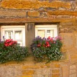 Tiny Scottish windows with flowers — Stock Photo