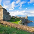 Ruins of St Andrews Castle — Stock Photo #21648009