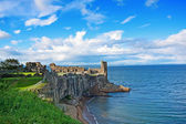 Ruins of St Andrews Castle — 图库照片