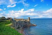 Ruïnes van het kasteel van st andrews — Stockfoto