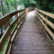 Wooden bridge in the park  — Stock Photo