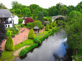 Güzel yaz bahçesi — Stok fotoğraf