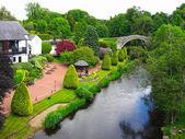 Krásné letní zahrada — Stock fotografie