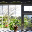 Kitchen window with the view on garden - ストック写真
