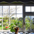 Kitchen window with the view on garden — Stock Photo