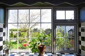 Kuchyňské okno s výhledem na zahradu — Stock fotografie