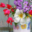 Stock Photo: Lovely Spring flowers