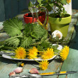 Beautiful , stylish herbal table - ストック写真