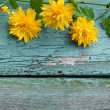 Pretty wooden background with yellow flowers — Stock Photo