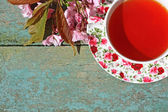 Beautiful japanese cherry tree and a cup of tea — Stock Photo