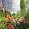 Stock Photo: Beautiful spring garden