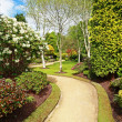 Beautiful spring garden — Stock Photo #26146671
